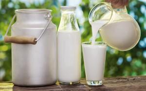 milk001