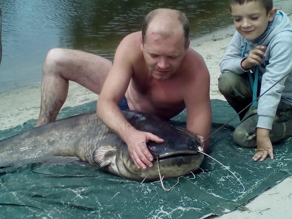 Чернігівець спіймав сома-велетня (Фото)