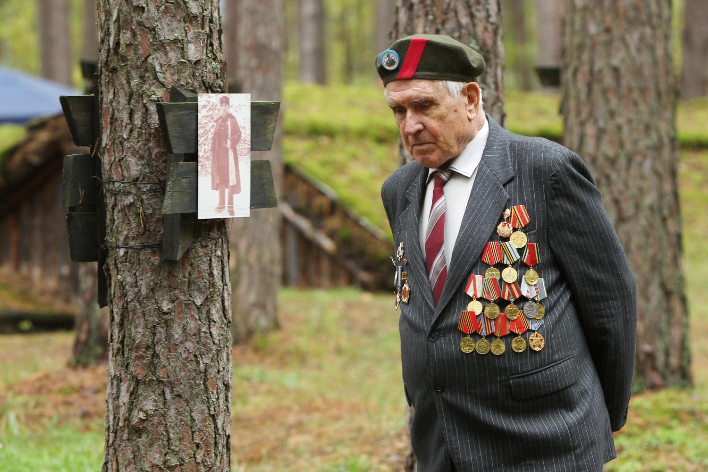 «Лісоград»: солдатська каша та численні виставки (Фото)