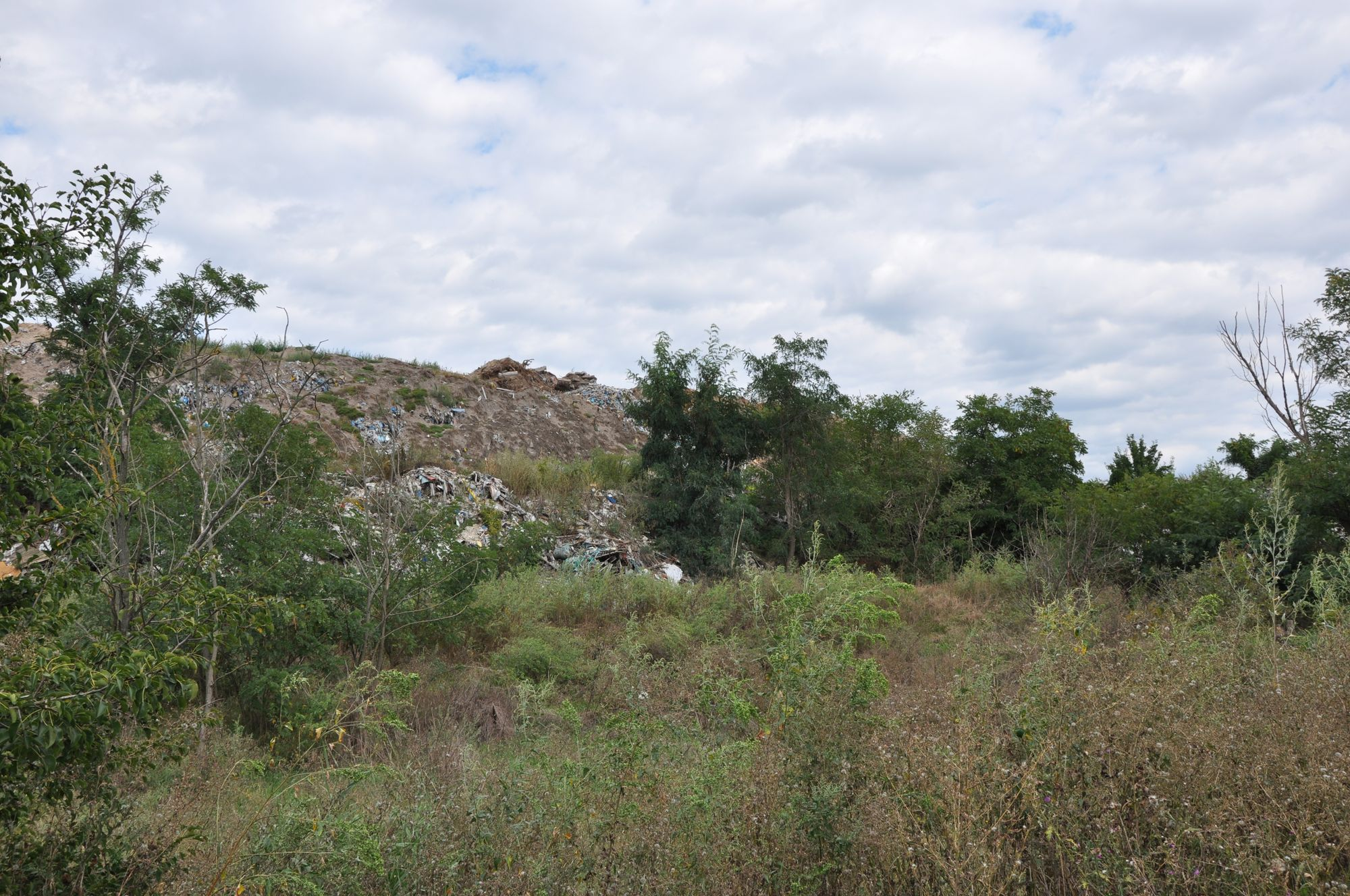 У Городнянському районі наймасштабніше сміттєзвалище Чернігівщини (Фото)