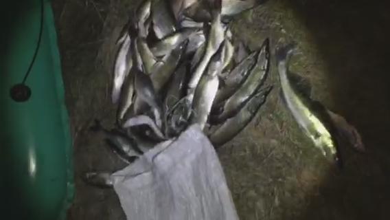 На Десні спіймали неслухняних рибалок (Фото)