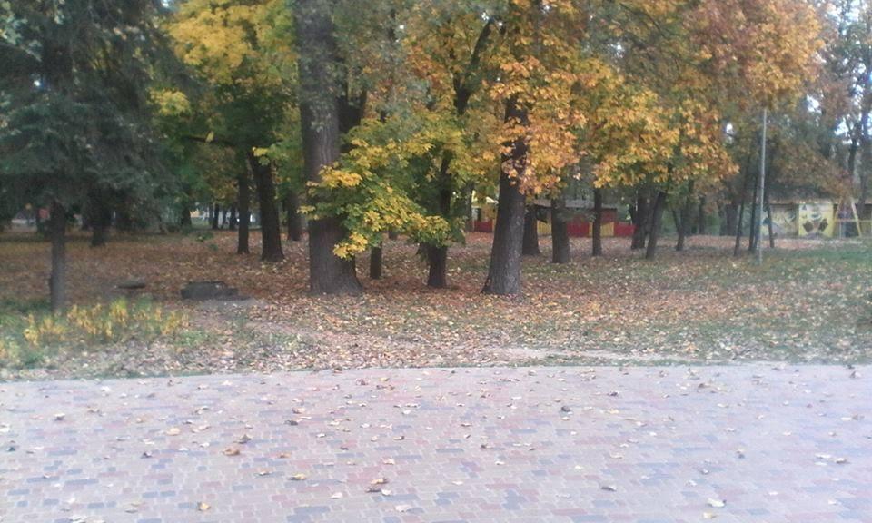 У міському парку культури можна впасти у відкриту шахту (Фото)