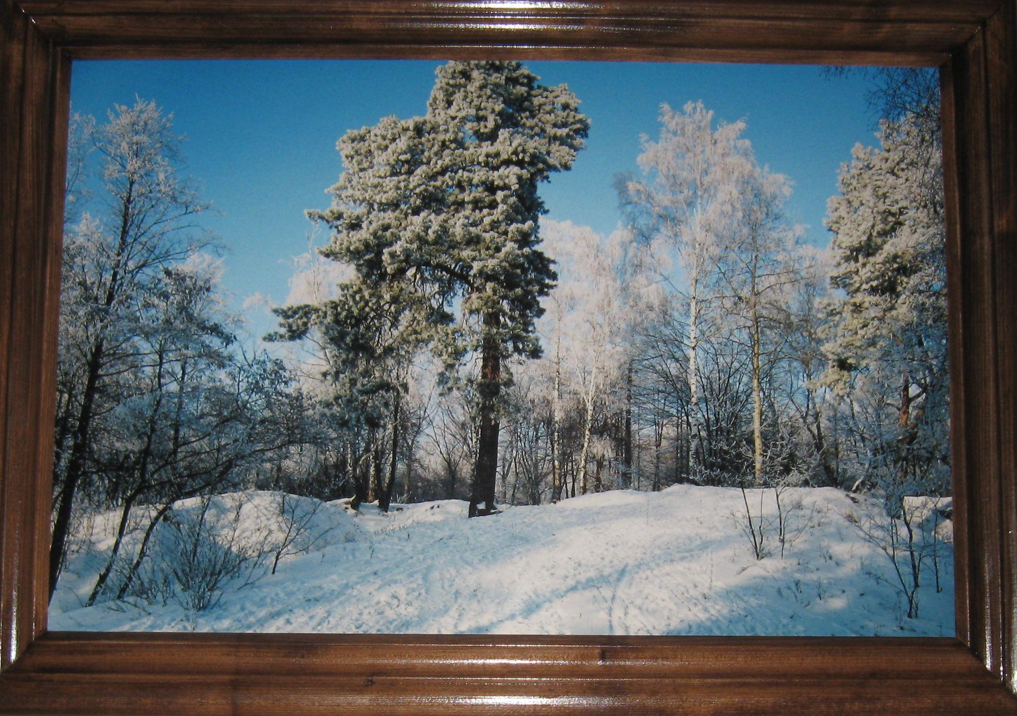 У Чернігові відкрилася виставка подарованих світлин  «Моя любов – Чернігівська земля» (Фото)