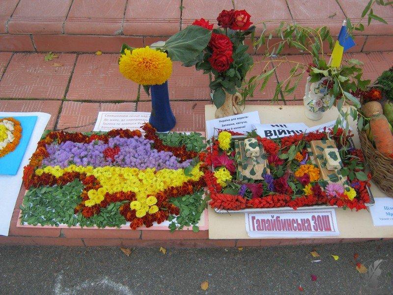 Ярмарок на Борзнянщині: весілля, виставки та «солодка гиря» (Фото)
