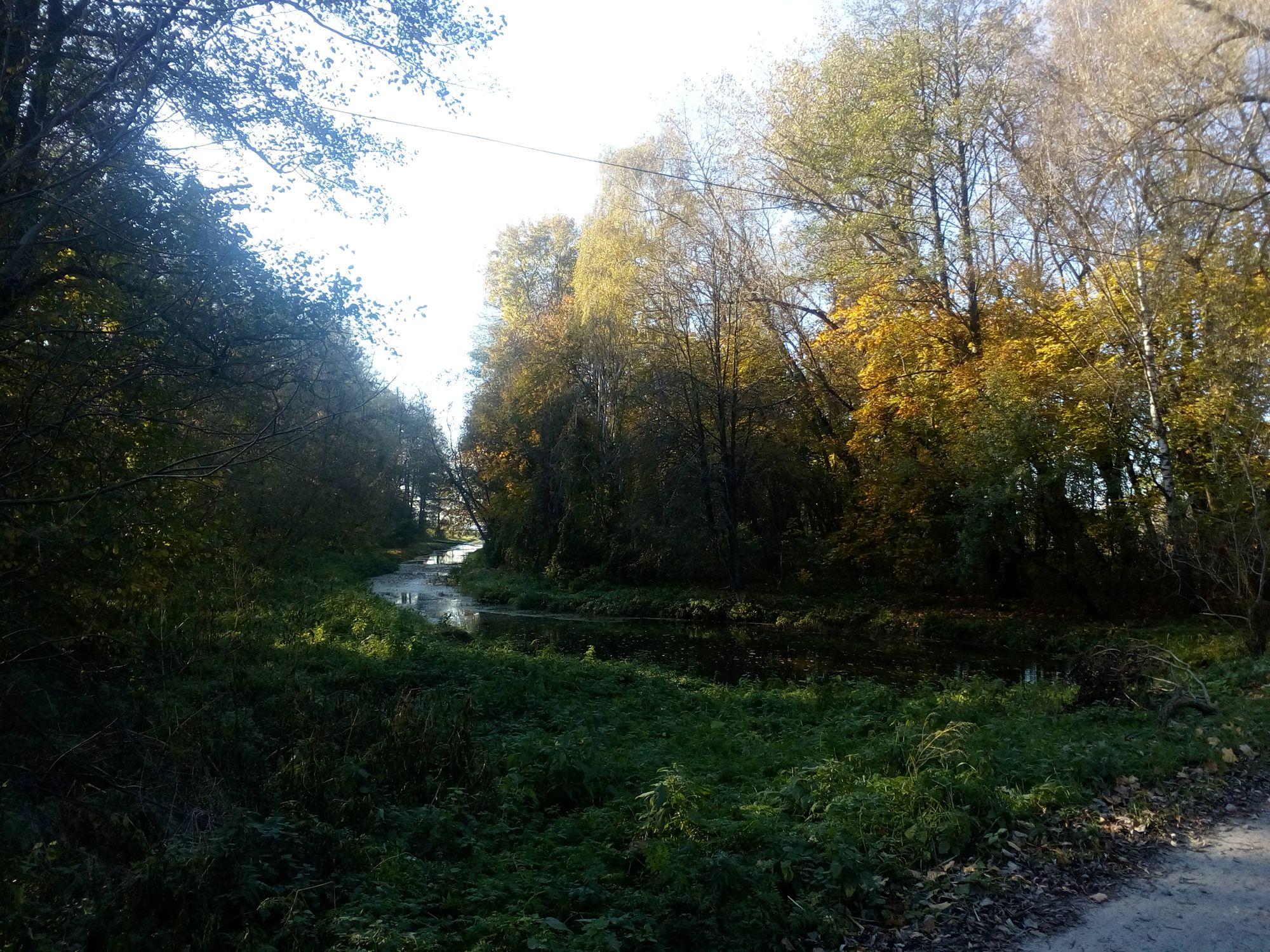 Осінь на Чернігівщині (Фото)