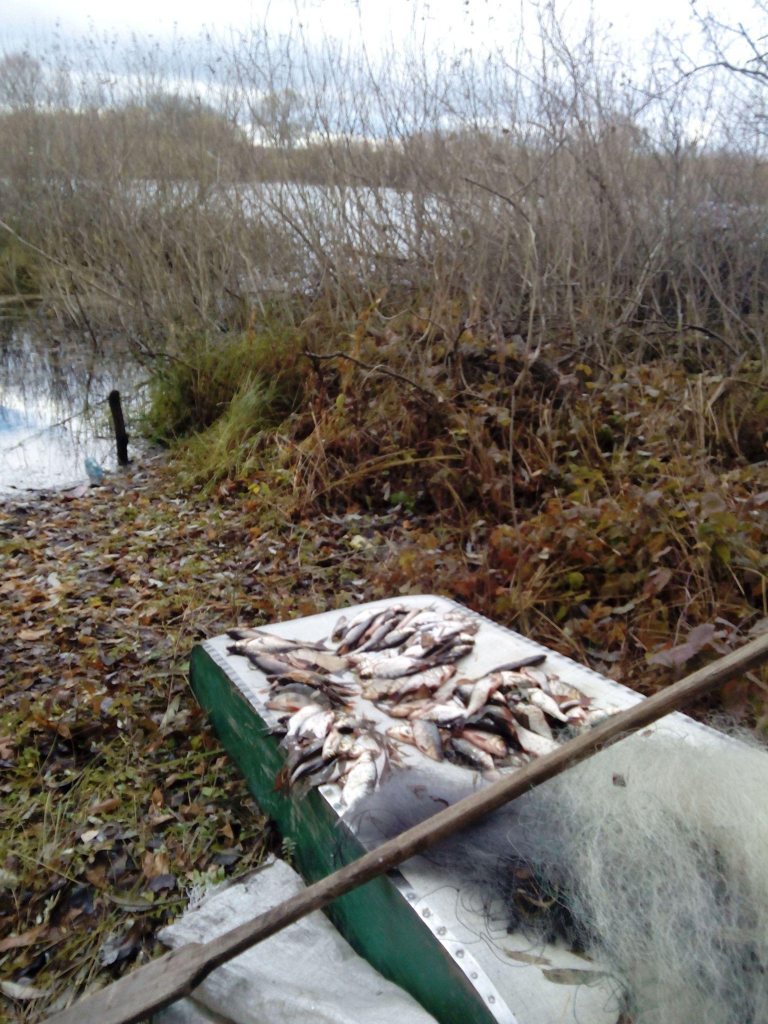 На Чернігівщині затримано браконьєра з «уловом» майже на 9 тисяч (Фото)