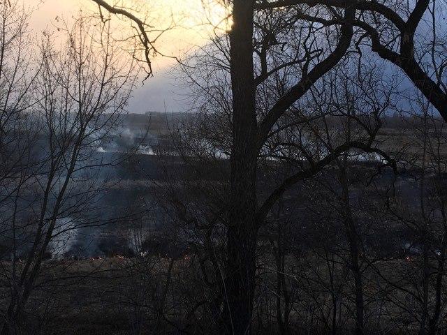 На Чернігівщині вигорають луги (Фотофакт)