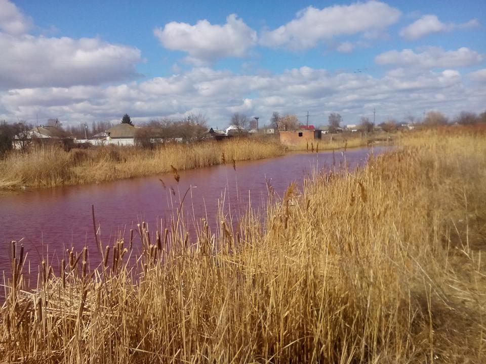 У Ніжині з'явилося рожеве озеро (Фото)