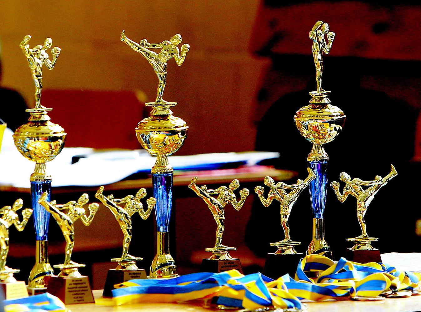 Кікбоксинг – наймасовіший вид єдиноборства на Чернігівщині (Фото)