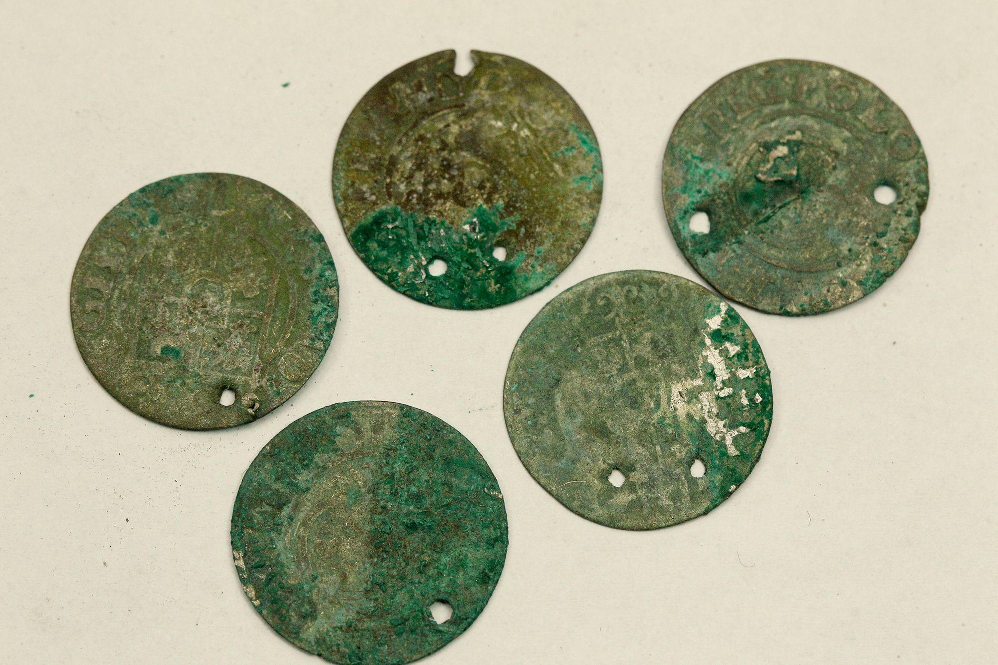 У Чернігові науковці оцінюють монети часів Сигізмунда (Фото)