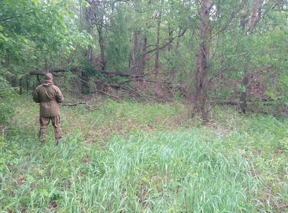 Поліція та громадськість шукають у лісах браконьєрів (Фото)