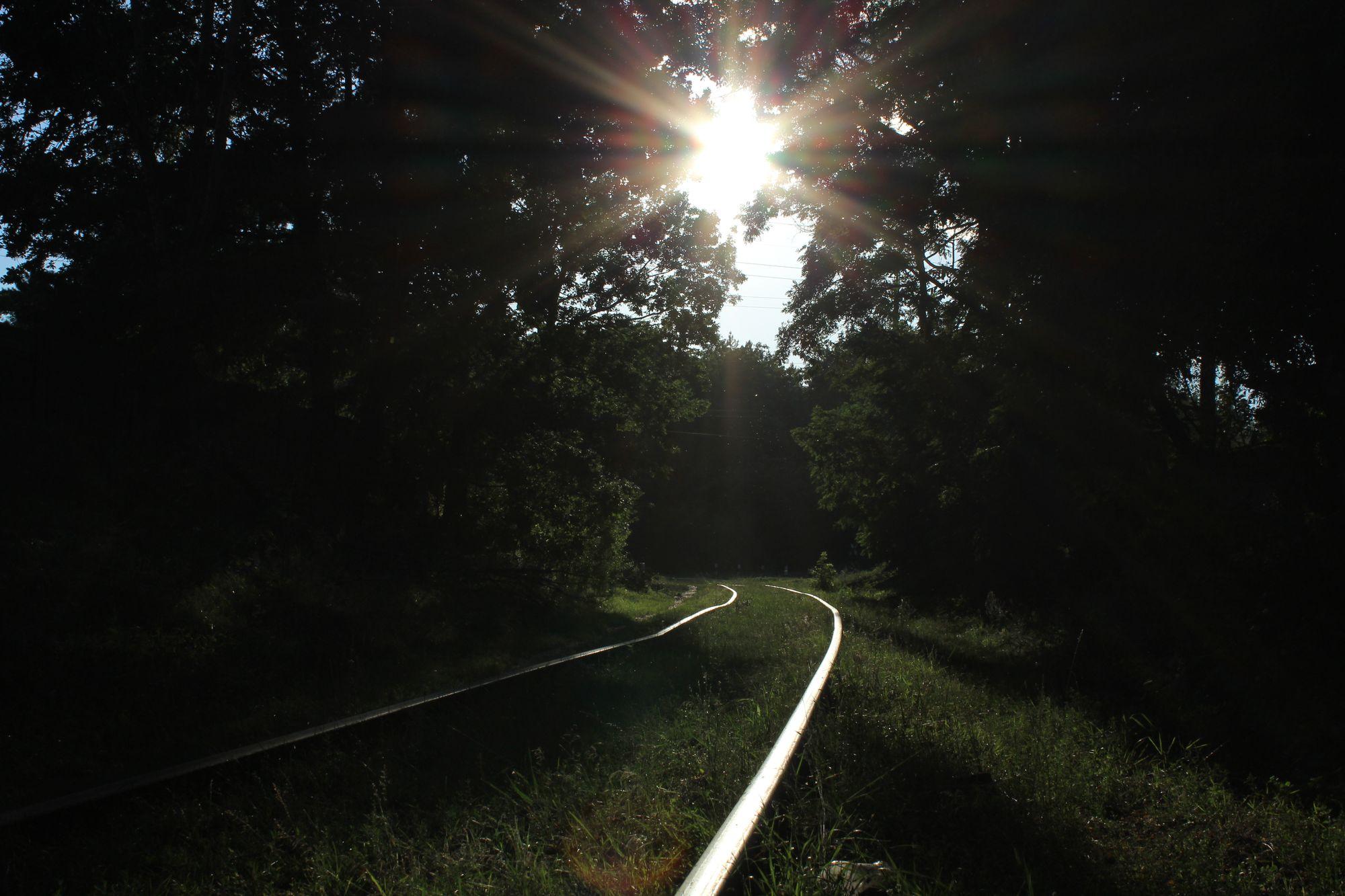 Чернігівський тунель кохання – фотограф-любитель знайшов невідоме романтичне місце (Фото)
