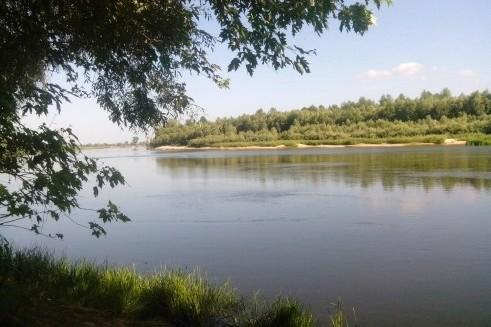 ryibalka-Desna[1]