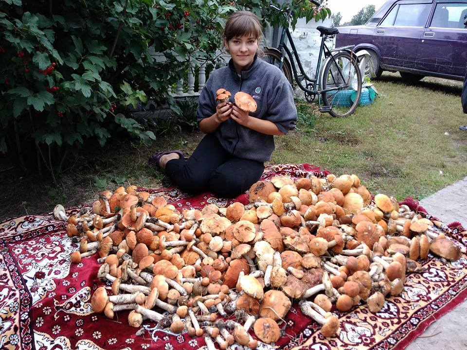 Сіверяни купаються в грибах – у прямому сенсі (Фотофакт)