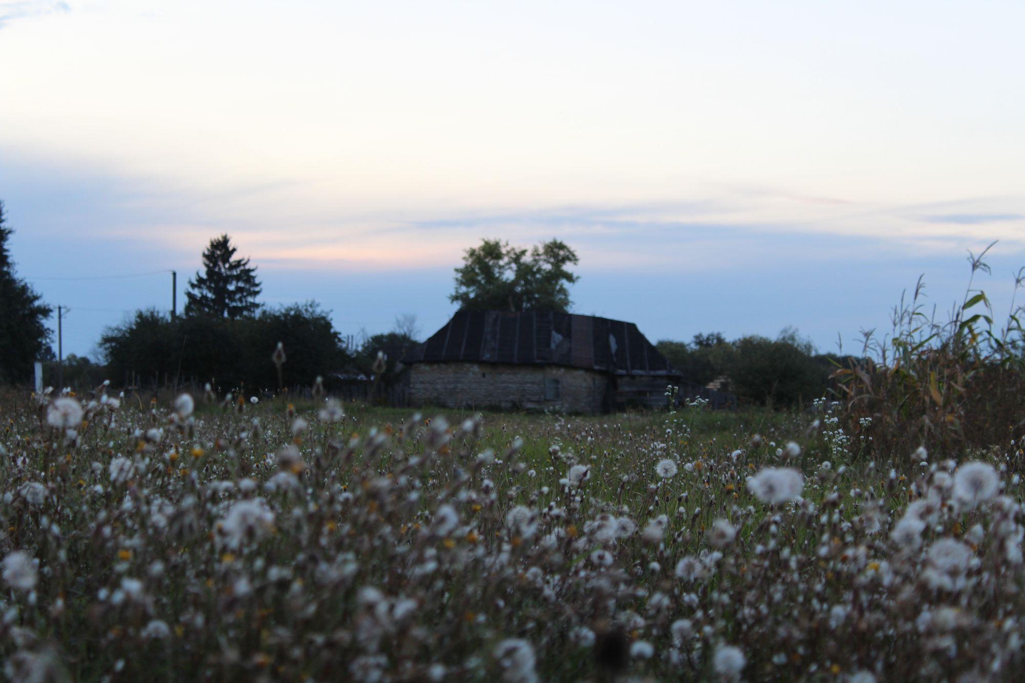 Осінній настрій: добірка сіверських пейзажів (Фоторепортаж)