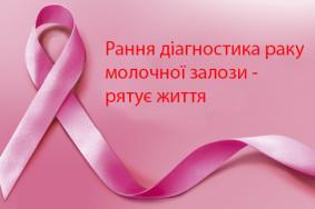 1476798584_1389803403_1382337322_pink_stripe_maket-06000