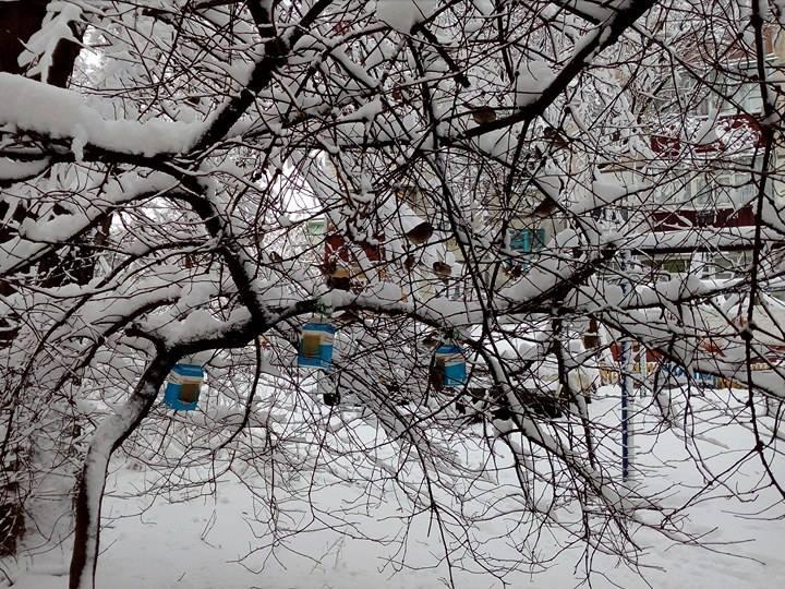 Погодуй пташку: «пункт обігріву» для пернатих (Фото)