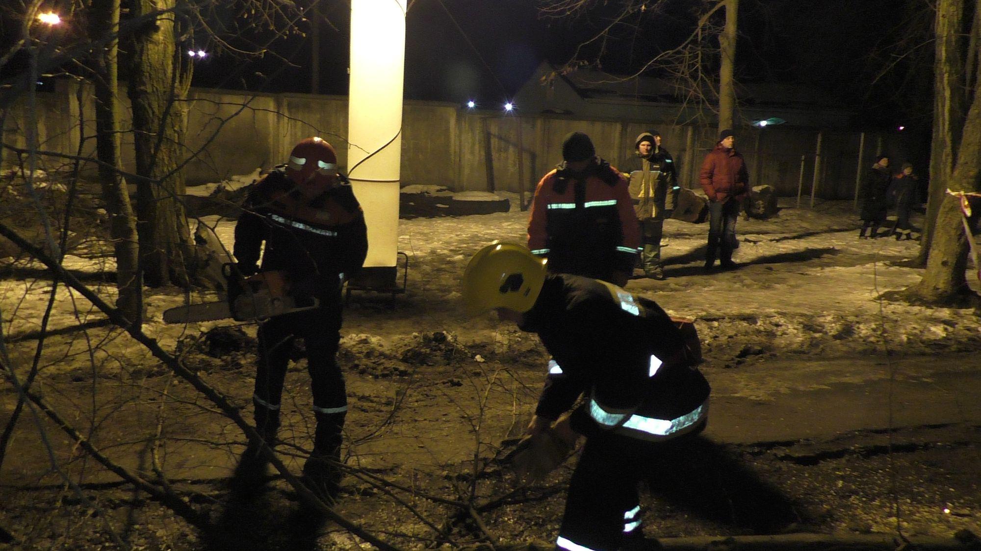 По вулиці Мазепи дерево впало на будинок (Фото)