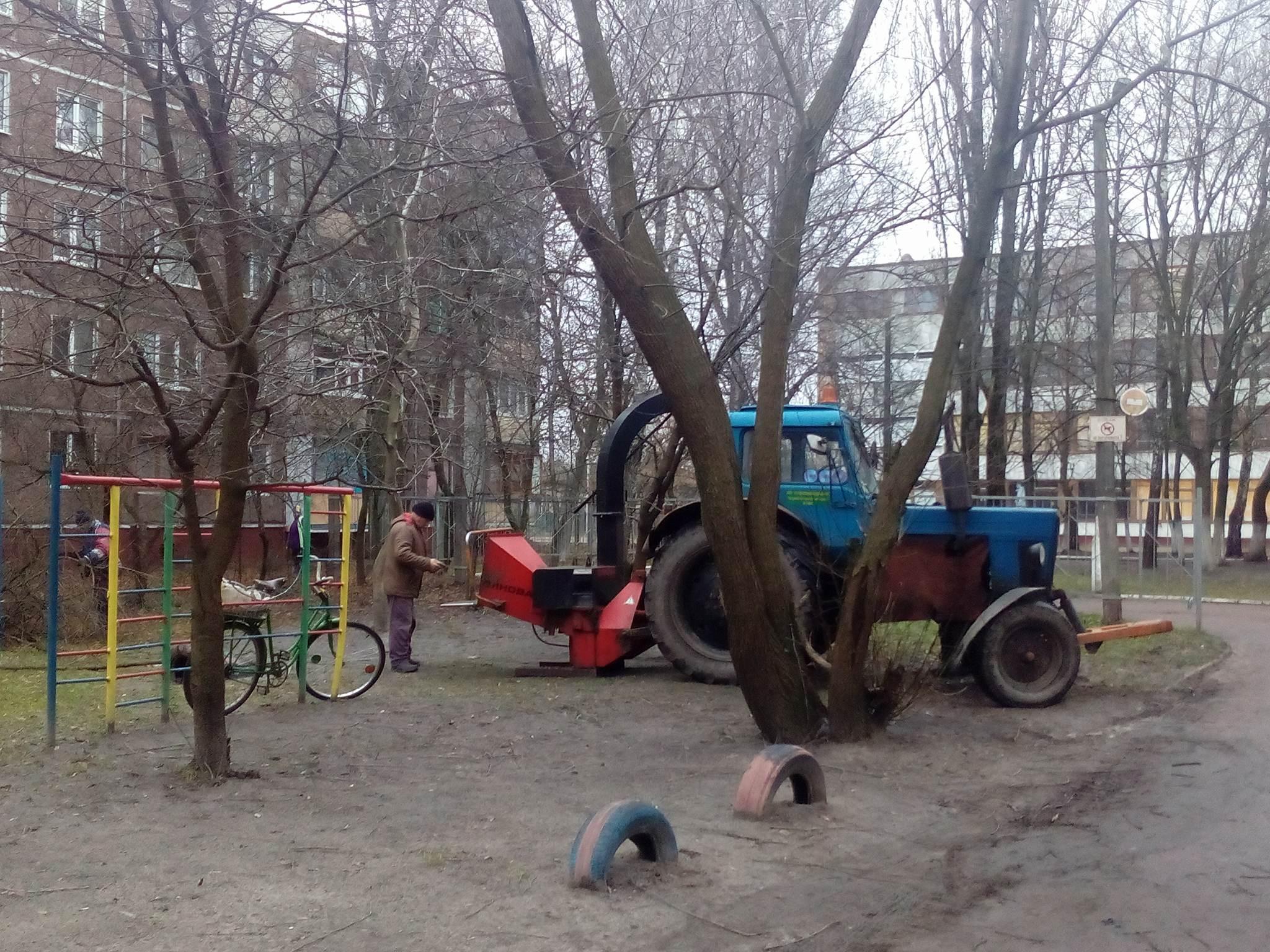 Комунальники прокинулися з новорічного «анабіозу» і прибирають проблемне дерево (Фото)