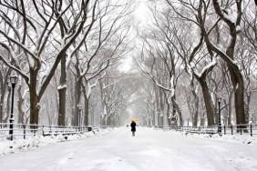las_imagenes_mas_bonitas_de_nueva_york_bajo_la_nieve_de_la_tormenta_stella_681_630x[1]