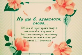 28829748_743256159215590_1767214360_n