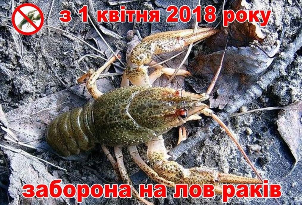 раки 2018