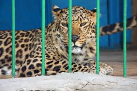зоопарк-640x426[1]