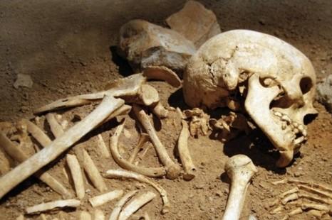 """Результат пошуку зображень за запитом """"знайшли скелет"""""""