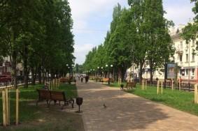 Zelenbud_dereva_ozelenennya1-1-840x536