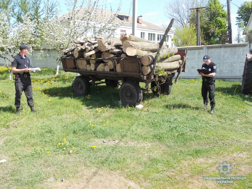 У жанрі Блокбастера: тракторист-утікач, ватажок-екс-міліціонер і «чорні» лісоруби» (Фото)