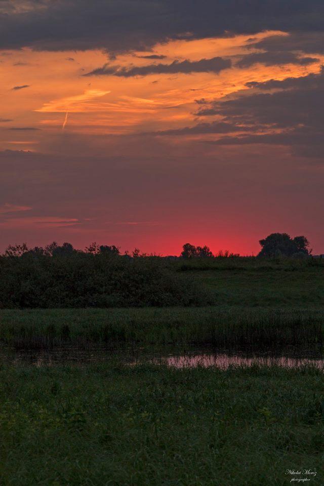 Чернігівщина зачаровує: природа сіверського краю (Фото)