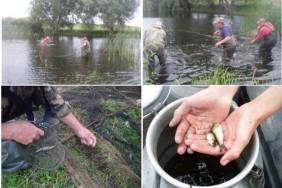 Спасіння молоді риб_на сайт 1