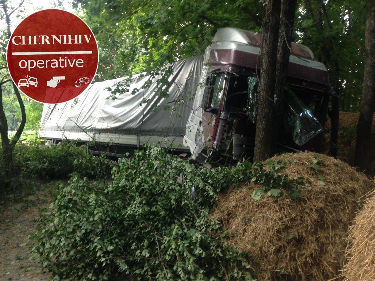 На Чернігівщині вантажівка вперіщилася в дерево (Фотофакт)