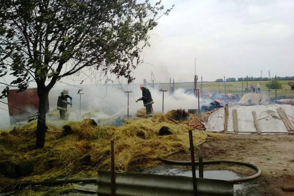 На Чернігівщині жінка отримала опіки, рятуючи худобу (Фото)