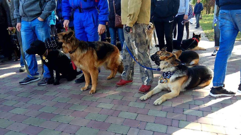 Чотирилапе шестя: центральними вулицями Чернiгова пройшов марш (Фото)