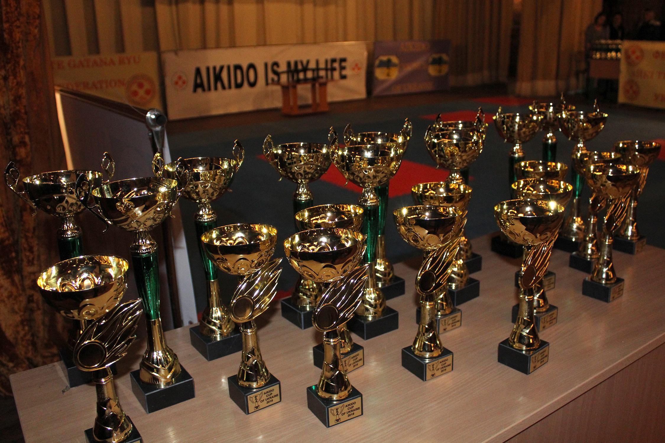 Відбувся Міжнародний фестиваль «UKRAINE MARTIAL ARTS CUP 2018»/Кубок України з айкідо – 2018 (Фото)
