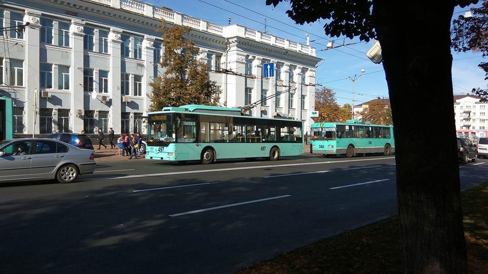 У центрі Чернігова зупинились шість рогатиків (Фотофакт)