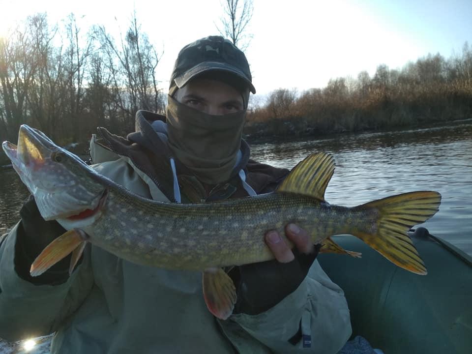 Сезон зимової риболовлі відкрито: трофеї чернігівських рибалок (Фото)