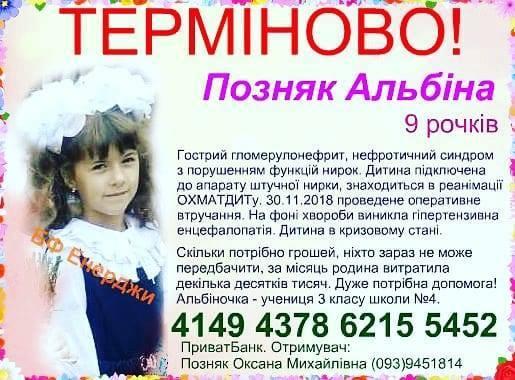 48388164_300233000608440_3925332665225445376_n