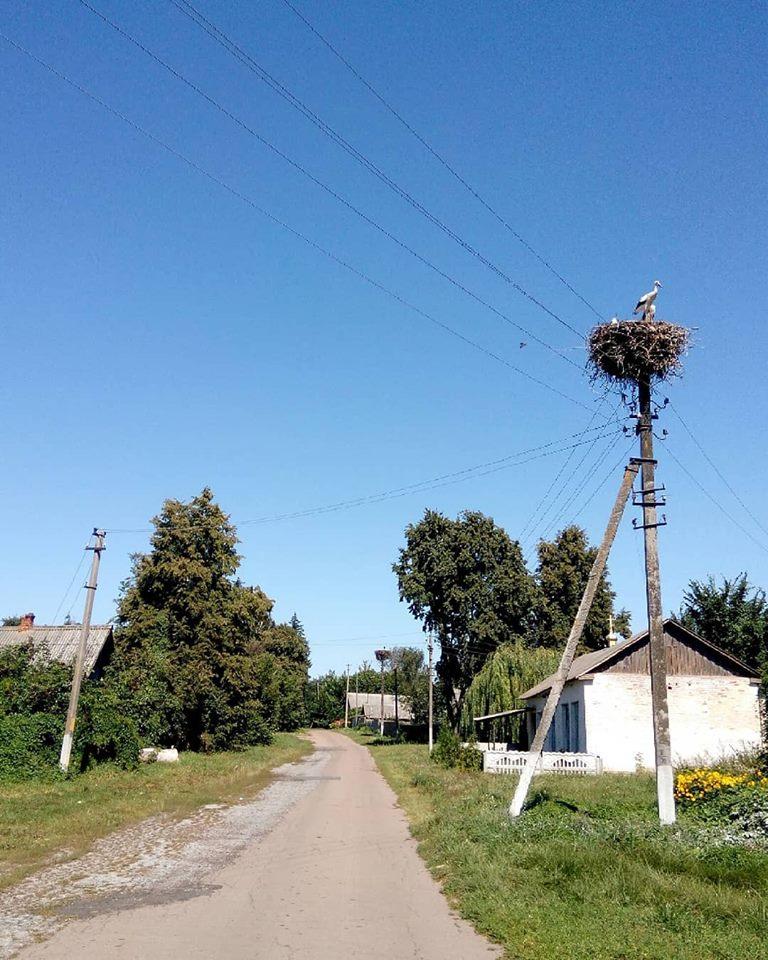 Самобутня Сновщина: народна архітектура села (Фото)