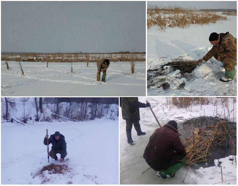 На Чернігівщині рятували рибу від задухи