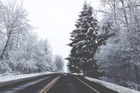 снится-зима