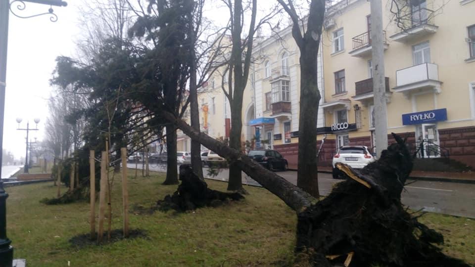 Наслідки буревію в Чернігові (Фото. Відео. ОНОВЛЕНО)