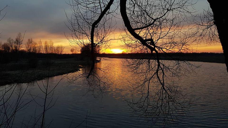 Природа Чернігівщини вражає: весняний пейзаж (Фото)