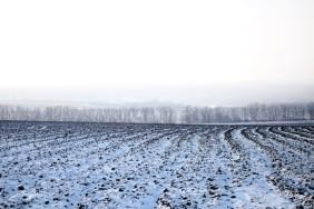 поле-зима2-1024x640