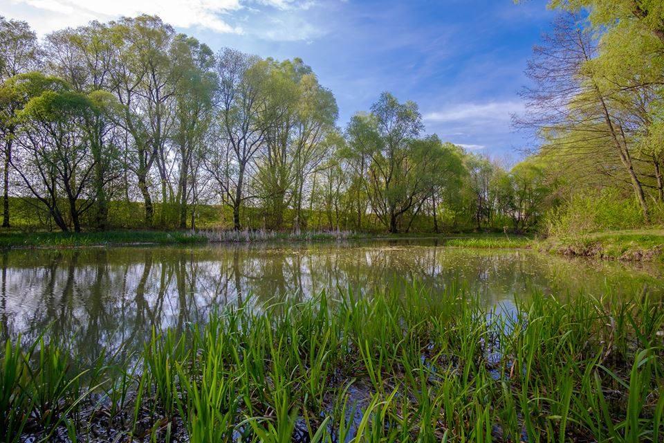 Фоторелаксація: краса села Павлівка (Фото)