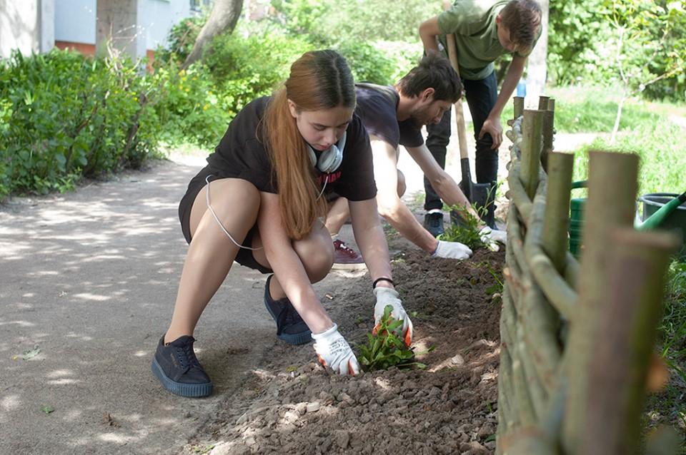 На першому громадському городі у Чернігові облаштували грядки (Фото)