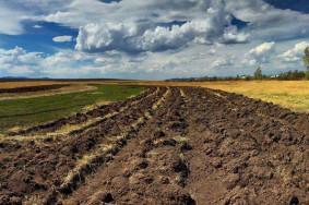agri-land