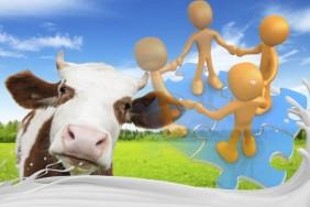 e5707ab-milk-cooperation