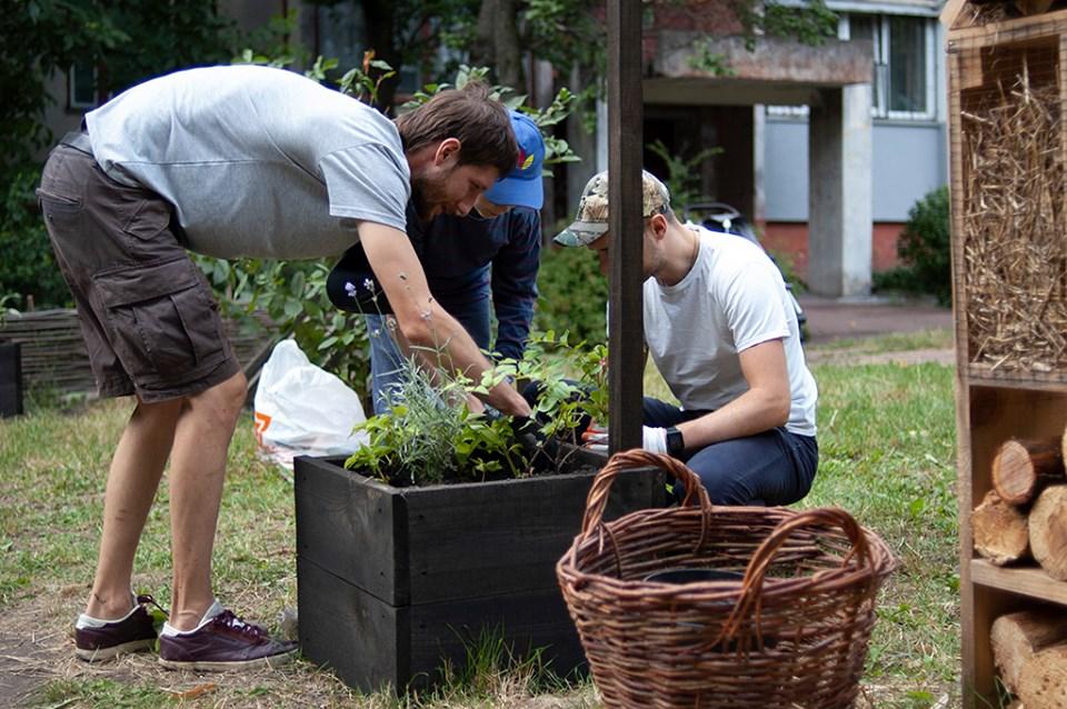 Екоактивісти висадили квіти на громадському городі (Фото)